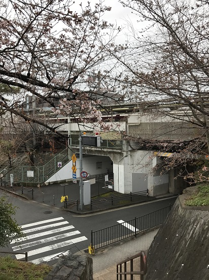 2017.4.1阪急夙川駅周辺桜①