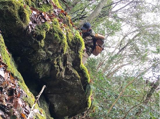 お話をお聞きすると、苔の採取にはご自身も野山に出向くのだそうです。
