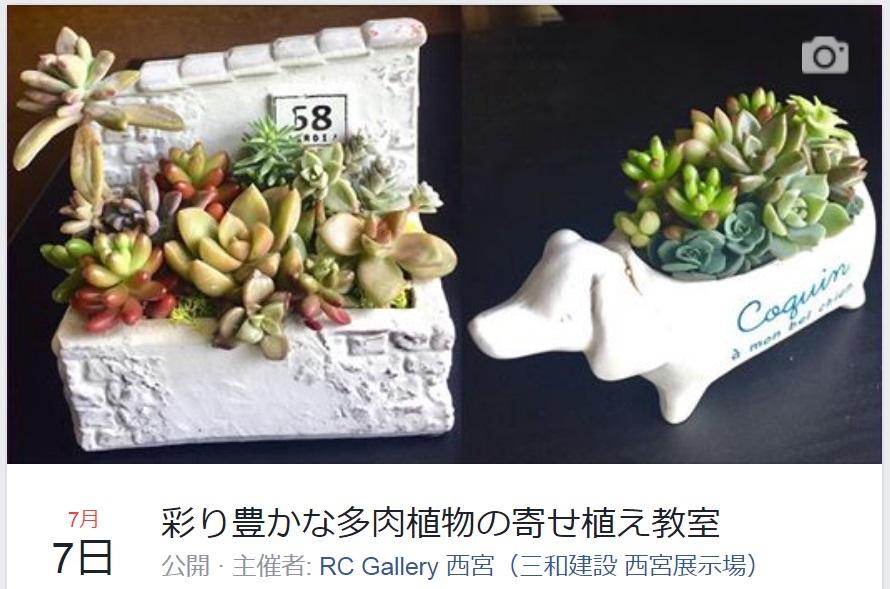 "7.7RCギャラリーイベントは""多肉植物寄植教室"""