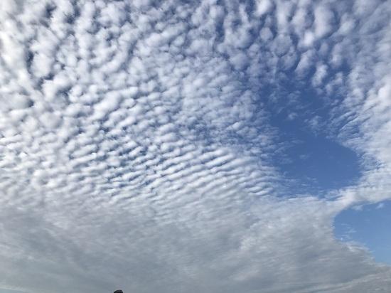 2018年9月うろこ雲
