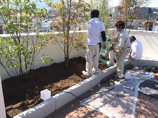 屋上の土は水持ちが良く自然の土の約半分の軽さの人工土